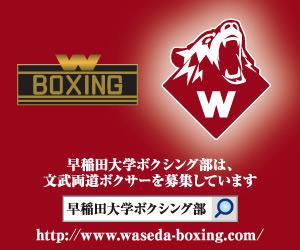 早稲田大学ボクシング部